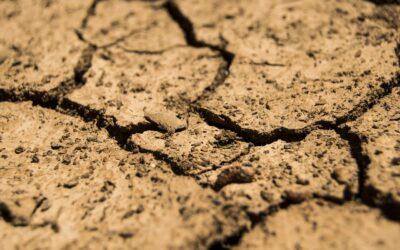 Trancheuse de sol : Comment choisir celle qu'il vous faut ?