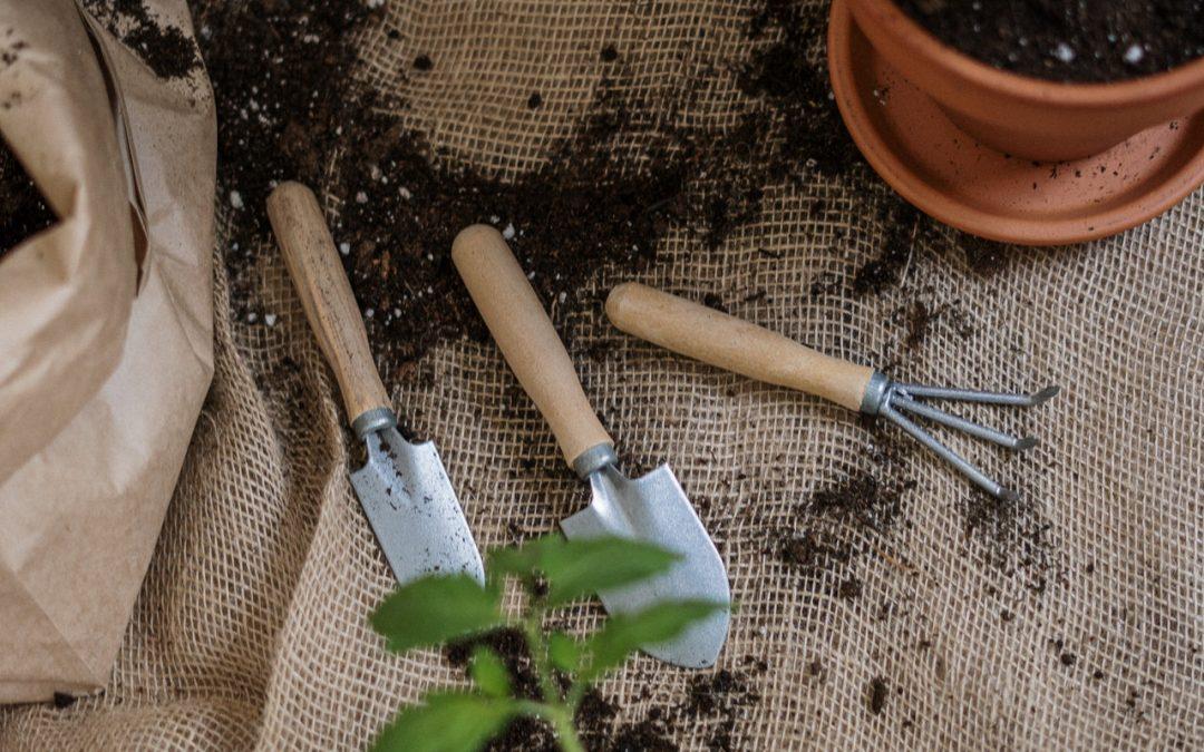 Pourquoi_le_jardinage_est_bon_pour_la_santé