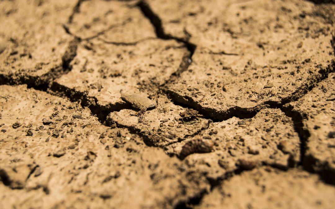 Trancheuse de sol
